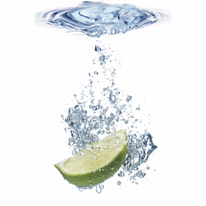 Lime Mojito Logo